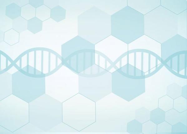 遺伝子組み換え細胞で傷ついた神経を回復させる