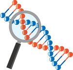 細胞が癌化するのに必要な遺伝子変異は何個か?