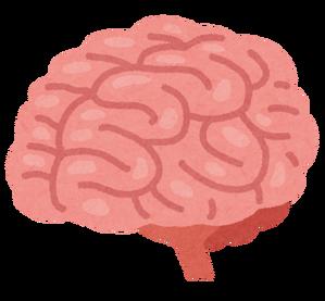 body_brain_nou