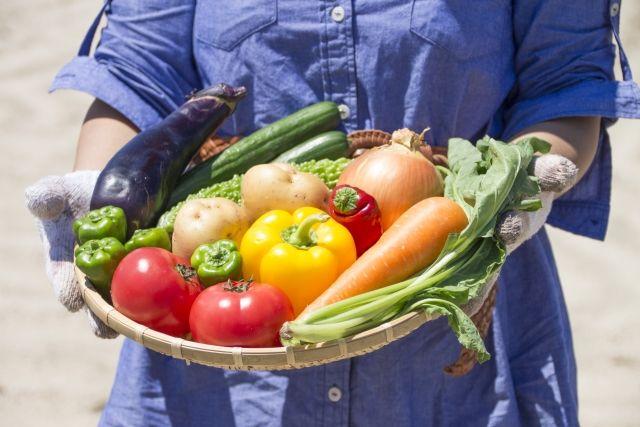 食物繊維は脳の炎症を抑え、老化を遅らせる