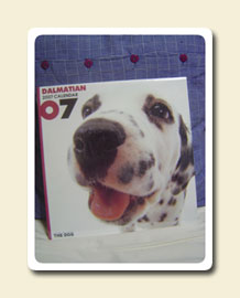 2007_THE_DOG_calendar_DALMATIAN