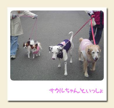 20051205 with SAKURU.jpg