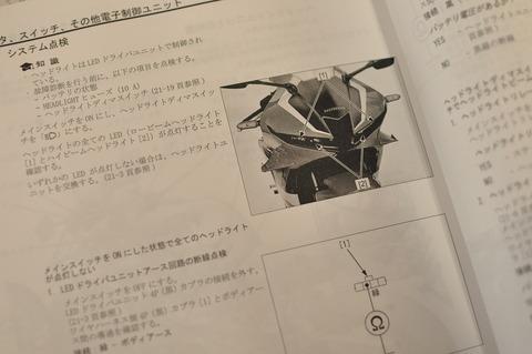 DSC_0176