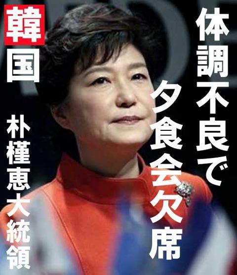 朴槿恵 (4)