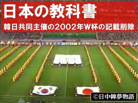 2002年サッカーW杯 (7)