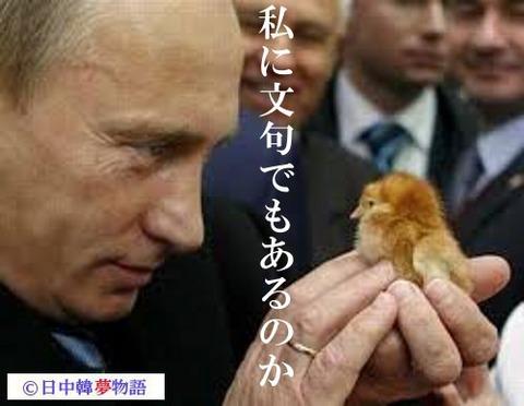 プーチンさん (2)
