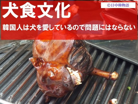 犬食文化 (2)