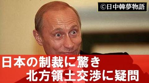 プーチン (8)
