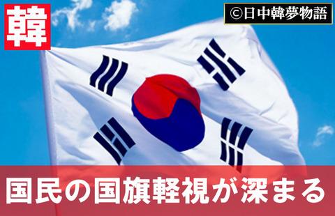 韓国旗30