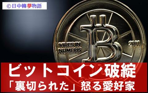 ビットコイン (6)