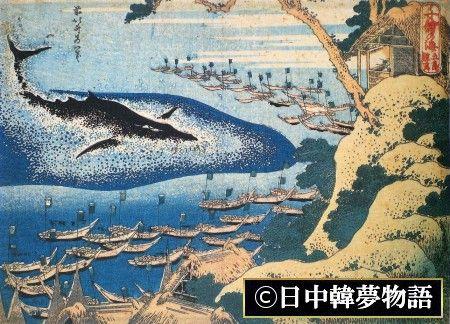 捕鯨問題 (2)
