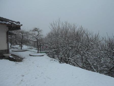 雪の月ヶ瀬2