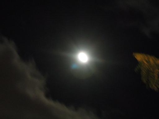 ニコン COOLPIX P300で撮影した月の画像