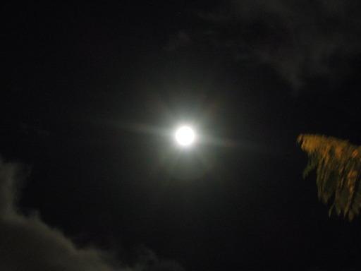 Nikon ニコン COOLPIX P300で撮影した月の画像04