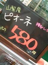 4dabbfc0.JPG