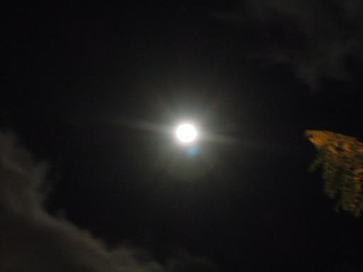 ニコン COOLPIX P300で撮影した月の画像03