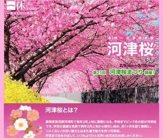 第21回河津桜まつりは2011年2月5日(土)〜3月10日(木)に開催決定