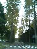 ea13328b.jpg