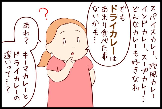 ドライカレー01
