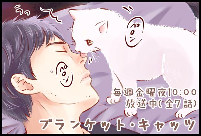 猫家さん05