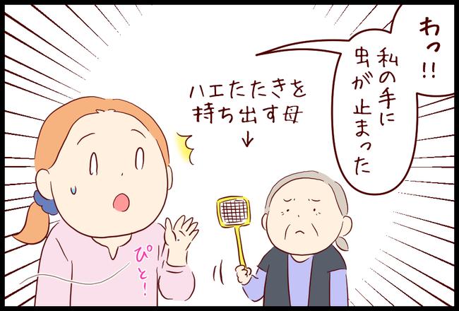 てんとう虫02