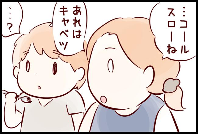玉ねぎ03