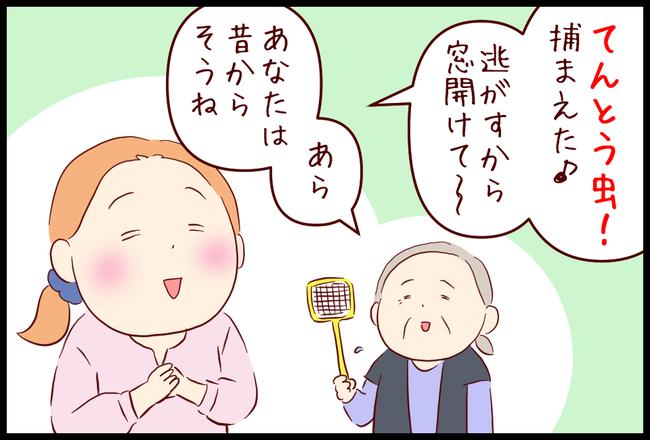 てんとう虫03