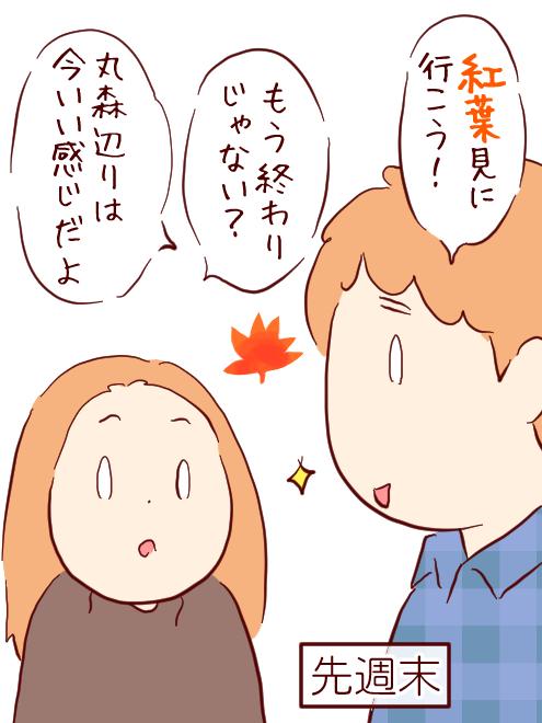 もみじ01