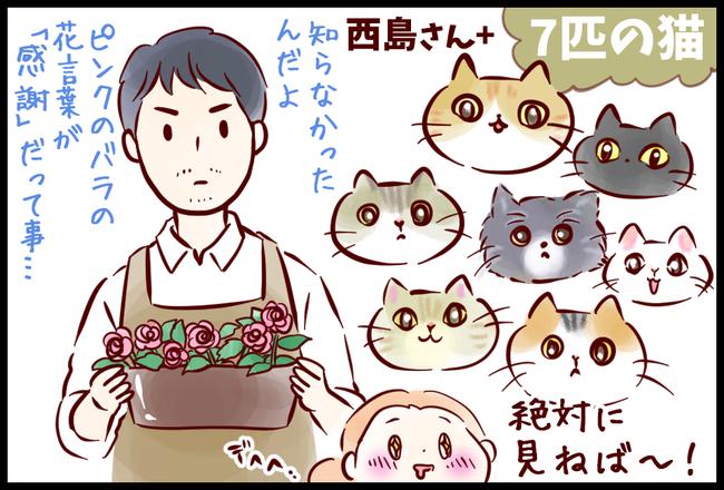 猫家さん01
