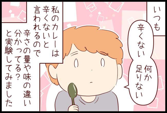 隠し味01