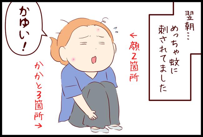 てんとう虫04