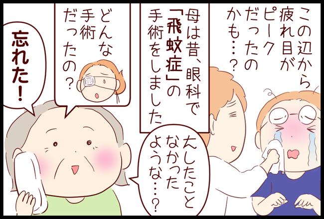 飛蚊症05