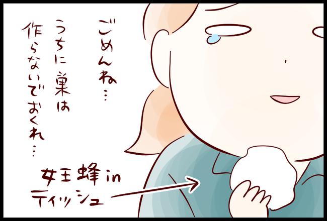 スズメバチ07