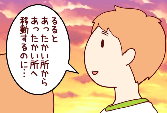 渡り鳥02
