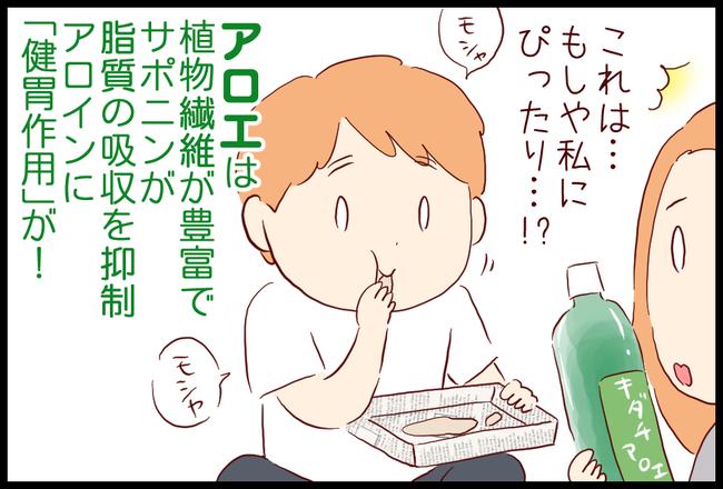 アロエ03