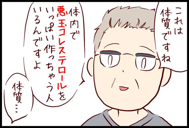 コレステロール11