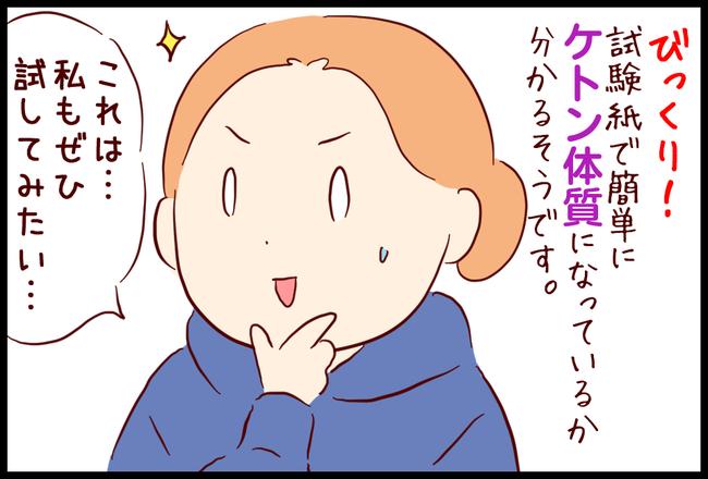 ケトン体02