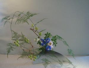 ☆花あそびDSC06906