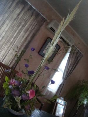 ☆花遊び8月DSC07098