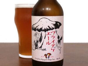 宮崎ひでじビール ワライダケエール