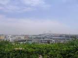 港が見渡せる丘です