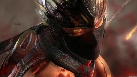 image_ninja_gaiden_3-14907-2238_0003