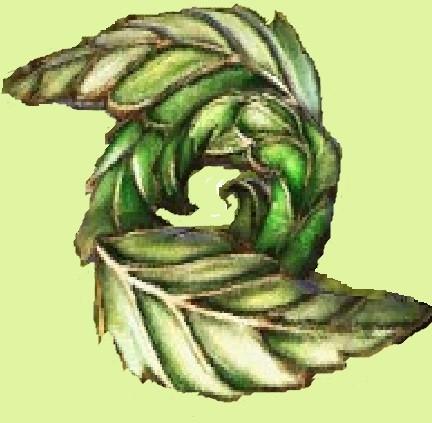 緑葉ディスク1