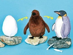 king_penguin_3_change_stuffed_animal