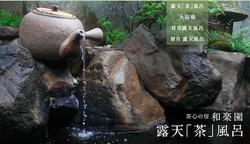 green_spring_open_tea_the_bath