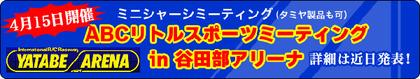 2012-04yatabe