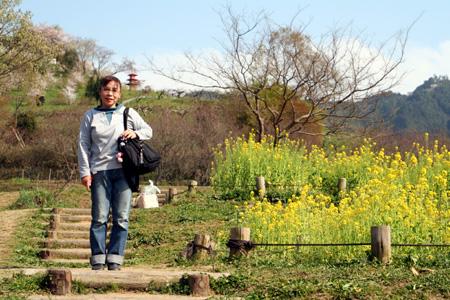 mackeyと菜の花