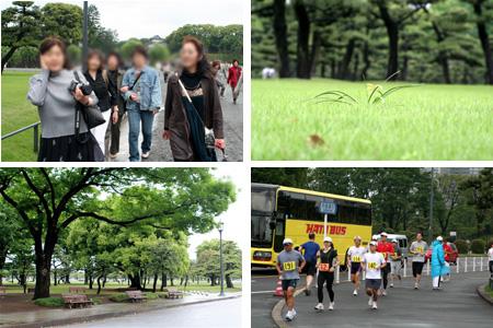 緑とマラソン