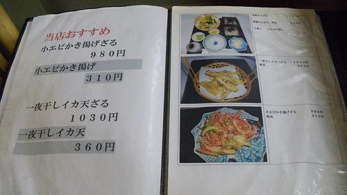 糸柳 (4)