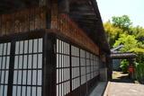 1105早川 (2)